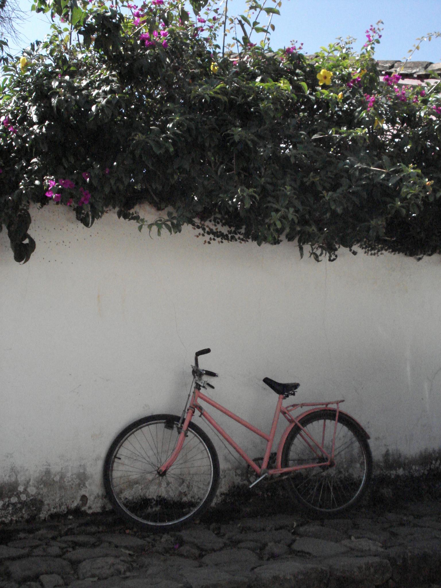 Foto tirada por mim durante um passeio pela cidade de Tiradentes (MG) em 2008