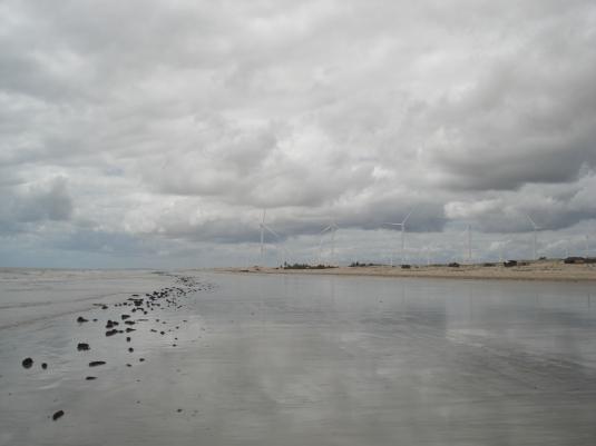 Praias desertas rumo a Camocim: plantação de cataventos